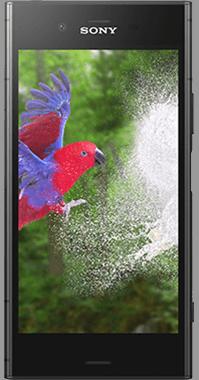 Sony Mobile Xperia XZ1 med SONY WF-1000X