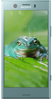 Sony Mobile Xperia XZ1 Compact med SONY WF-1000X
