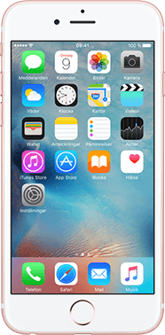 Apple Begagnad iPhone 6s 16GB