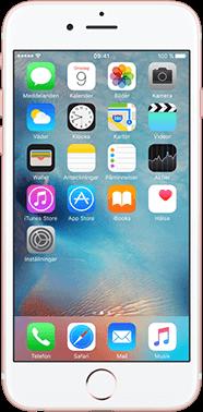 Apple Begagnad iPhone 6s 64GB