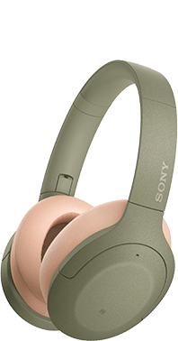 SONY WH-H910NL